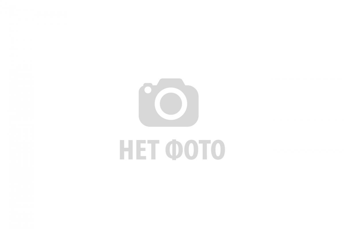 Камеры приема-запуска СОД (средств очистки и диагностики)